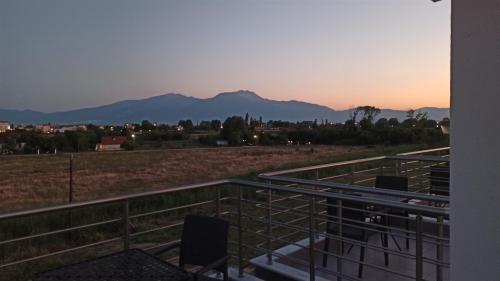ROOF GARDEN Olympus view